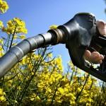 Automobile Propre : les biocarburants